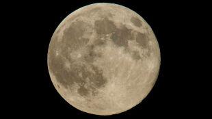 Słońce i Księżyc chcą spędzić czas sam na sam. Jak dawniej interpretowano zaćmienie