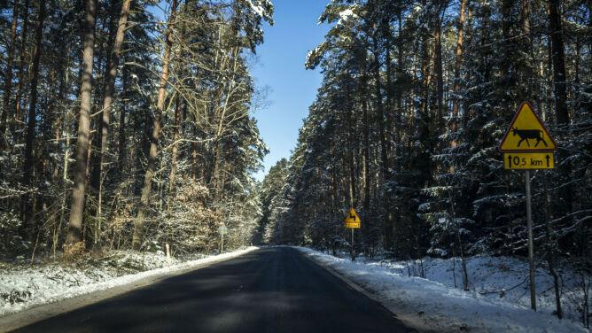 Miejscami na drogach śnieg