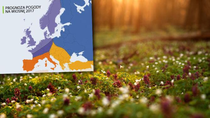 Zapowiada się walka wiosny z zimą. <br />Amerykańskie prognozy na najbliższe miesiące