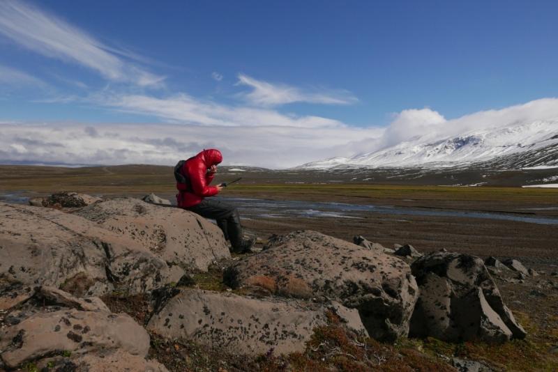 Trawers Islandii solo